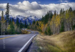 Autumn in the Alberta Rocky Mountains.jpg